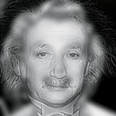 einstein-vs-marilyn.jpg