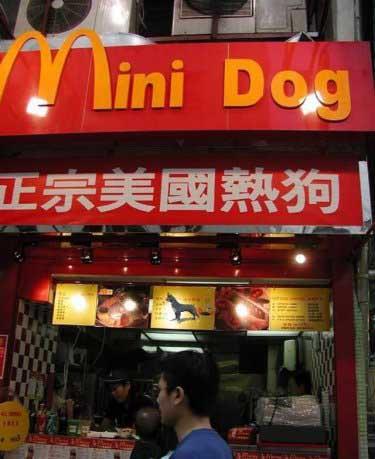 Q Comen Los Chow Chow Los chinos han estado mas